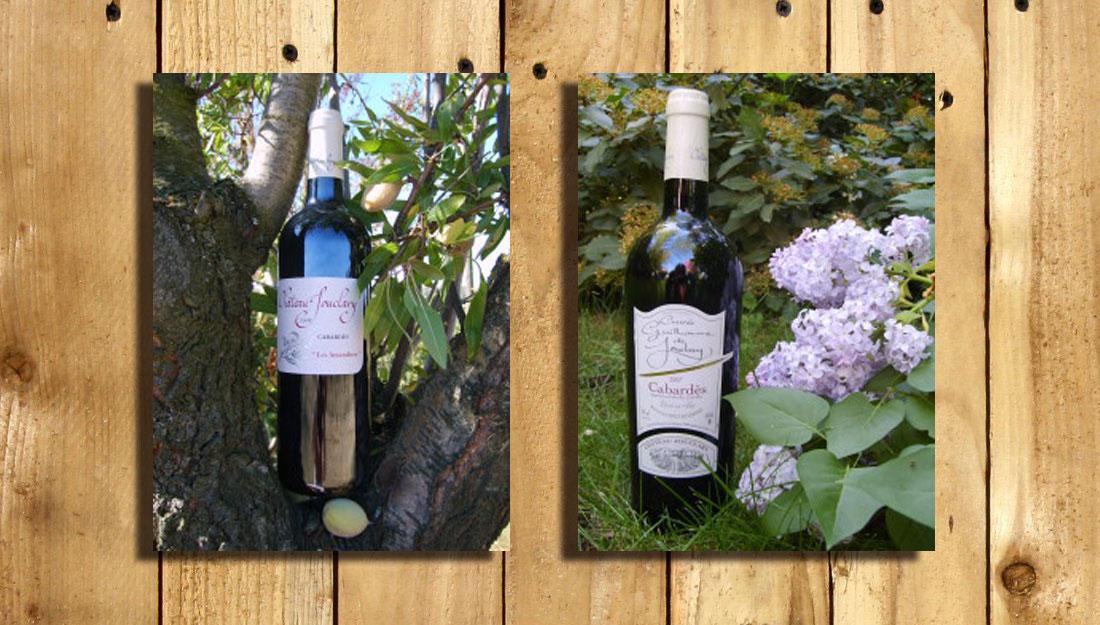 Concours-des-grands-vins-du-Cabardès-2011